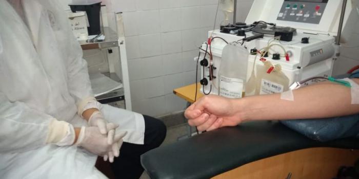 Milagros, la primera salteña en donar plasma para pacientes...