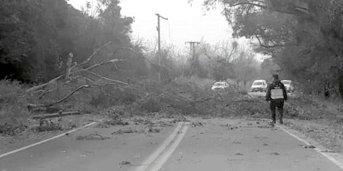 Asistencia integral en distintas zonas afectadas por fuertes ráfagas de viento zonda